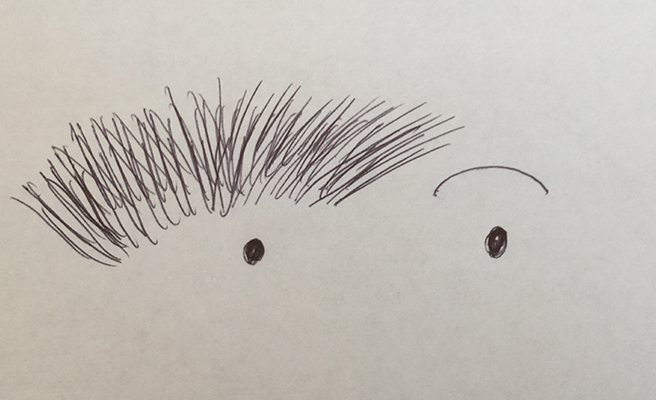 Cartoon of overgrown eyebrows