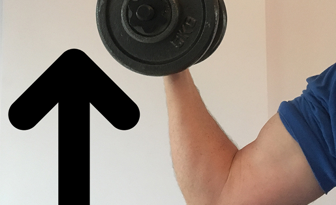 Up arrow with weightlifting arm